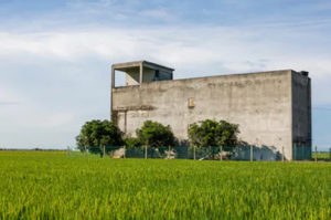 Read more about the article Effort to create market for Bird's Nest; there are 20,000 swiftlet house owners and farm in Malaysia