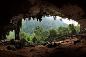 Read more about the article Venture into the mysterious 40,000 years old Niah Cave of Sarawak
