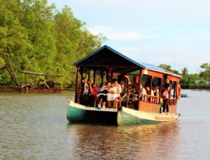 Read more about the article Top 3 Best Ways to Travel to and Around Borneo