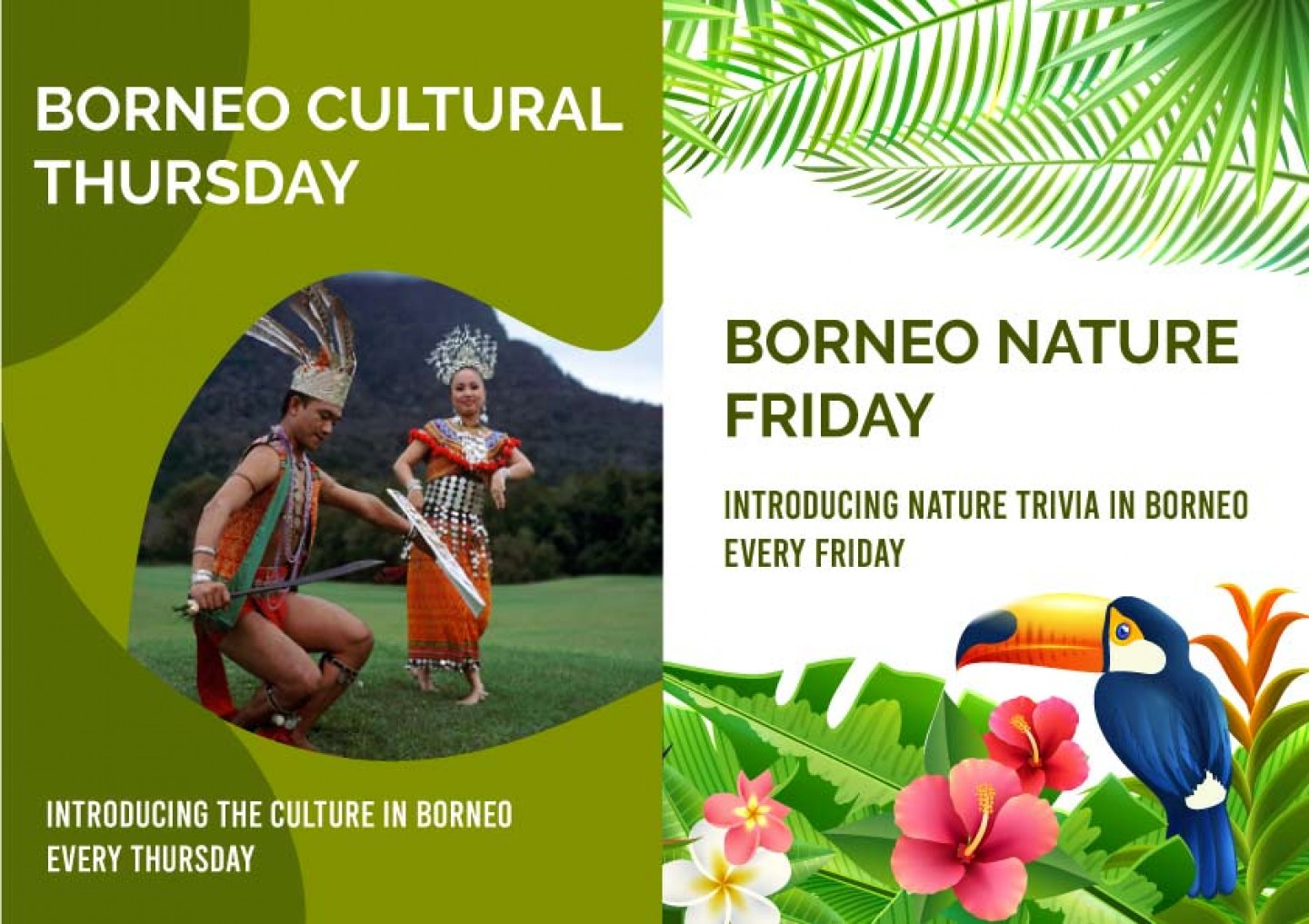 borneo-thursday-friday